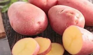 patata colfiorito