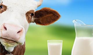 quote latte Italia 2014 2015 multe
