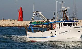 pescherecci adriatico fermo pesca
