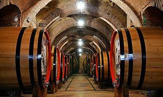 testo-unico-del-vino-italia