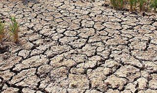emergenza siccità agricoltura