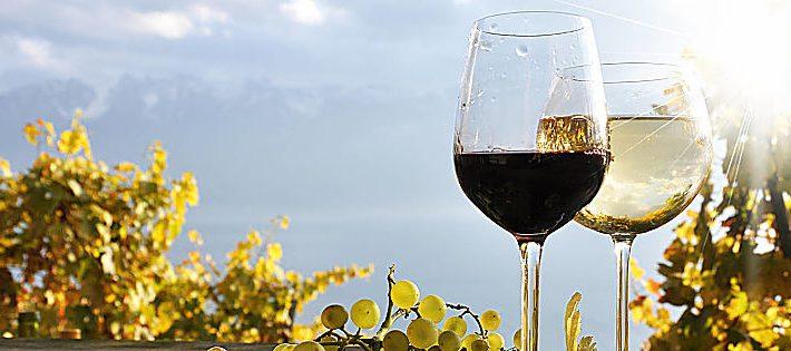 migliori vini della lombardia 2018