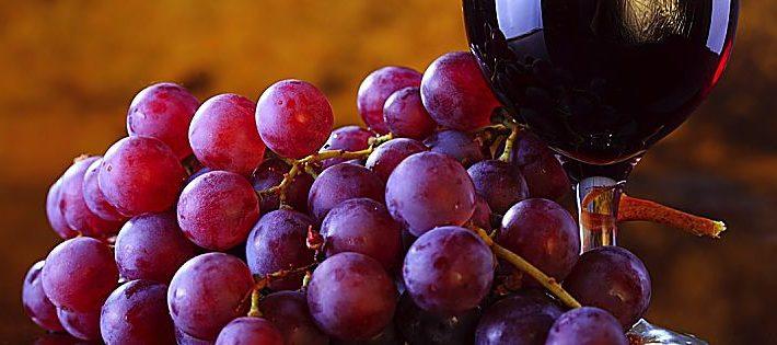 migliori vini italiani 2018 espresso