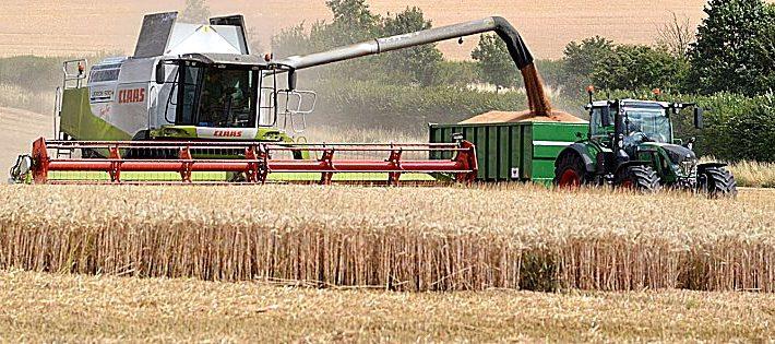 bonus giovani agricoltori 2018
