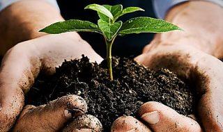agricoltura biodinamica italia