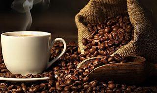 caffè italia aziende fatturato