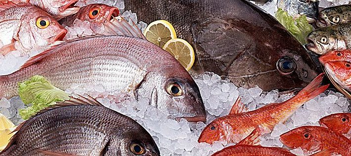manifesto eataly pesce crudo sostenibile