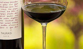 migliori vini del sud italia 2018 radici del sud