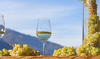 migliori vini altoatesini 2019