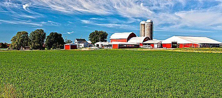 concessione terreni agricoli