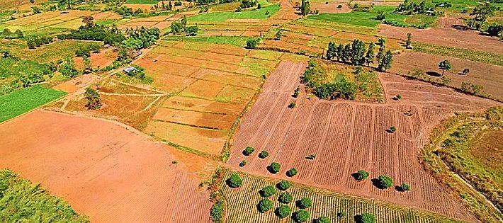 vendita terreni agricoli nel 2018