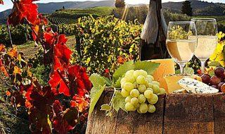 buy wine 2019 firenze