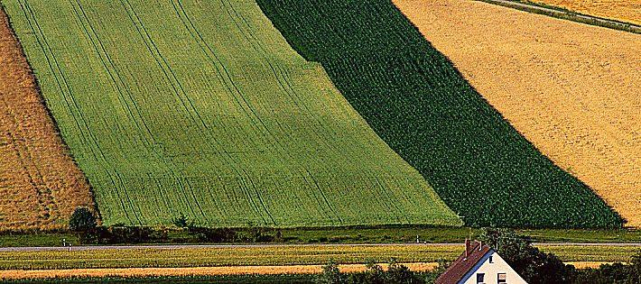 agricoltura europea import export
