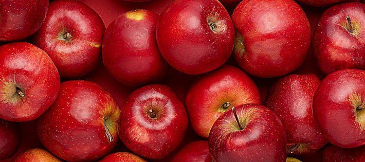 produzione di mele in europa 2019