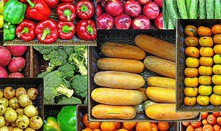 vela food erp settore alimentare