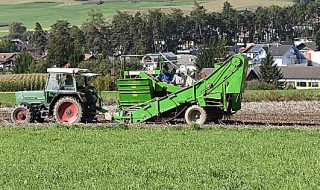 filiera agroalimentare italiana pil