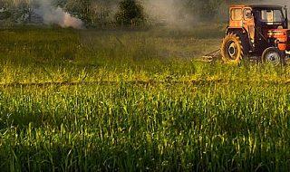 contributi ue aziende agricole coronavirus