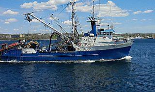 sovrasfruttamento dei mari fao