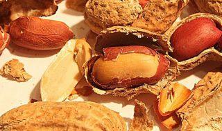 arachidi made in italy