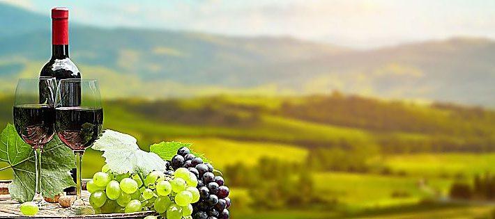 migliori vini gambero rosso 2021
