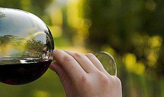 eventi mtv 2021 vino