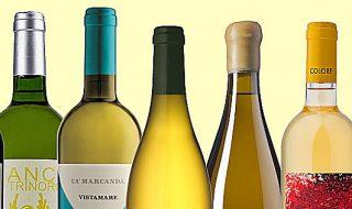 export vinicolo 2021 dati