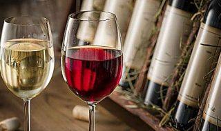 migliori vini pugliesi classifica 2022
