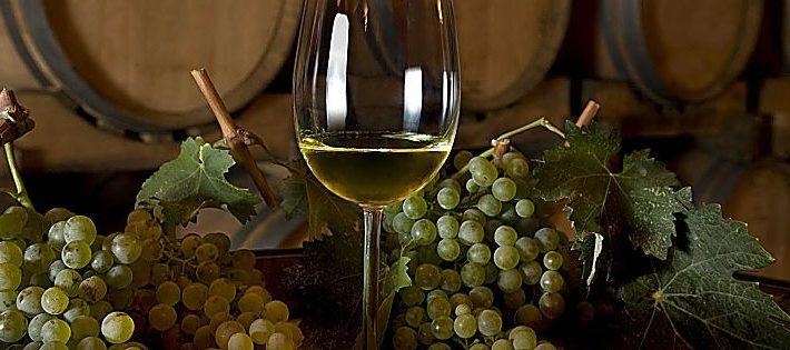 migliori vini sardi 2022